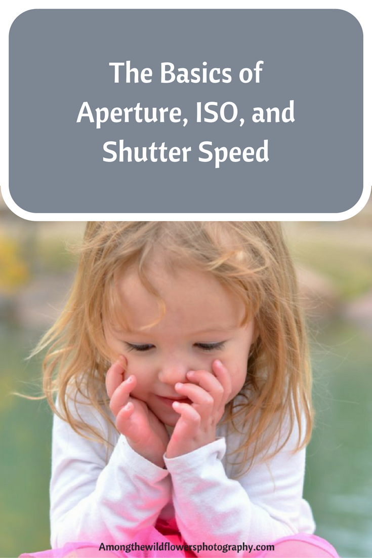 The basics of Aperture, ISO, and shutter speed