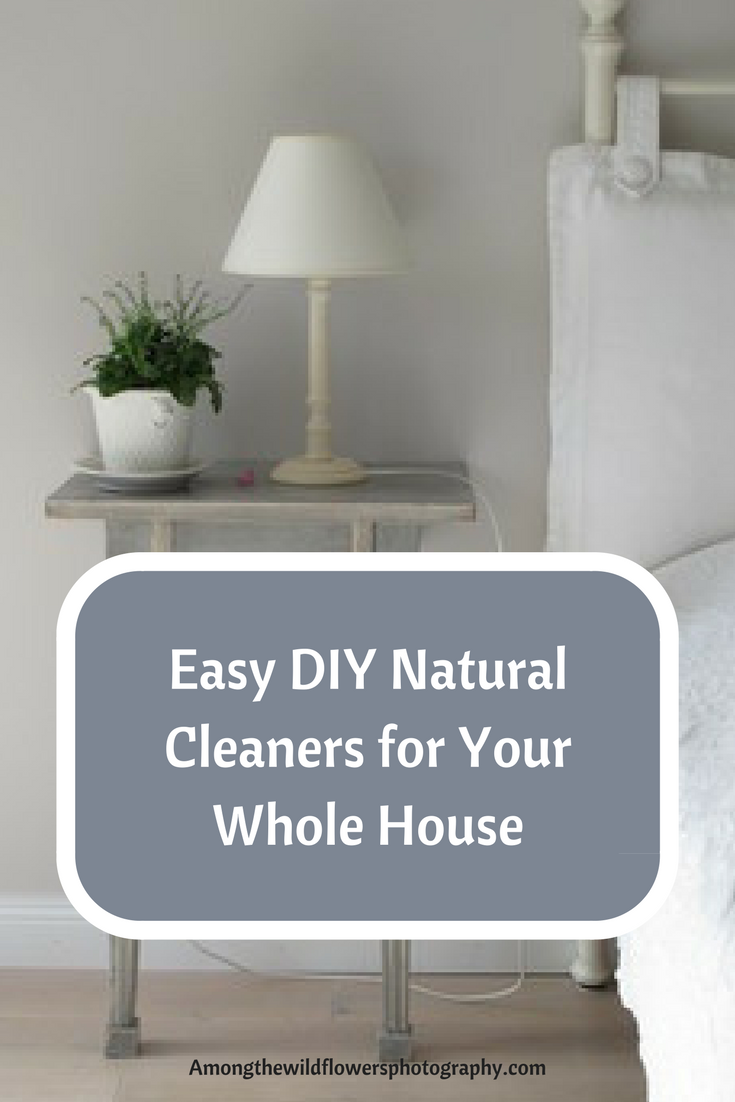 DIY natural cleaners